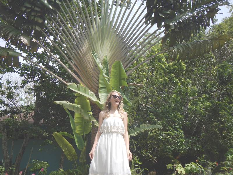 Falmouth Jamaica Wedding Photography - Jamaica Wedding - Six Hearts Photography03