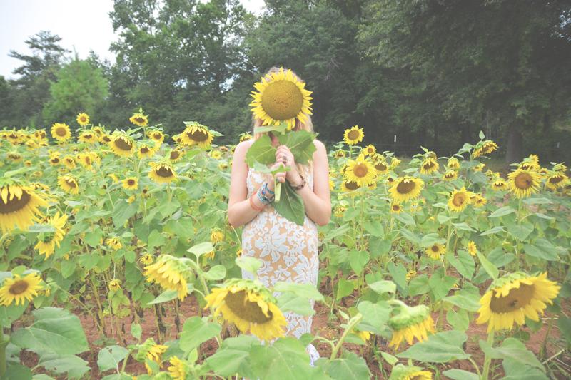 Same Sex Sunflower Field Wedding - Brooke + Cheyenne Elopement Picnic - Six Hearts Photography 55