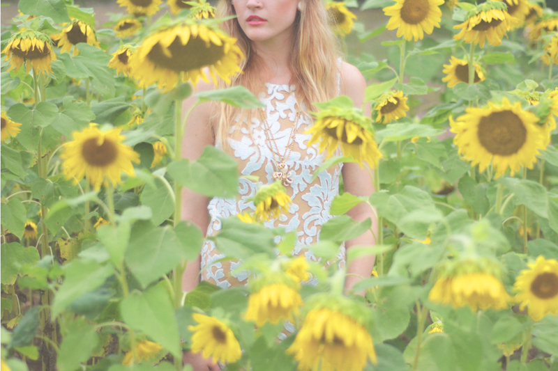 Same Sex Sunflower Field Wedding - Brooke + Cheyenne Elopement Picnic - Six Hearts Photography 70