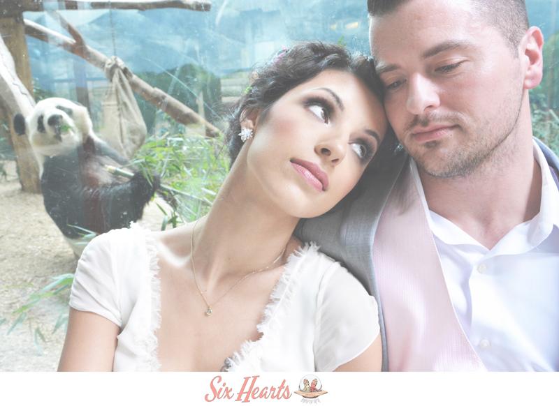 Atlanta Zoo Wedding Photography - Six Hearts Photography