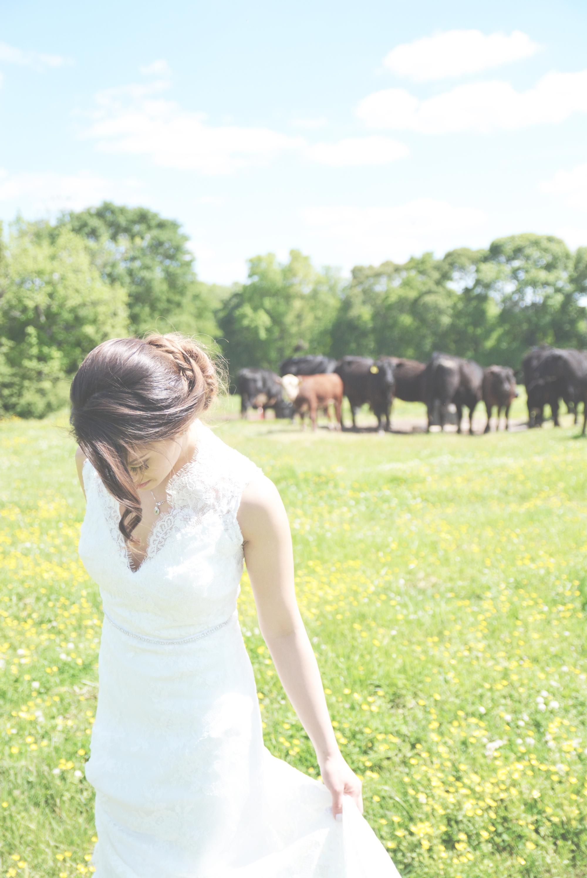 The Wright Farm Wedding Photography - Six Hearts Photography10