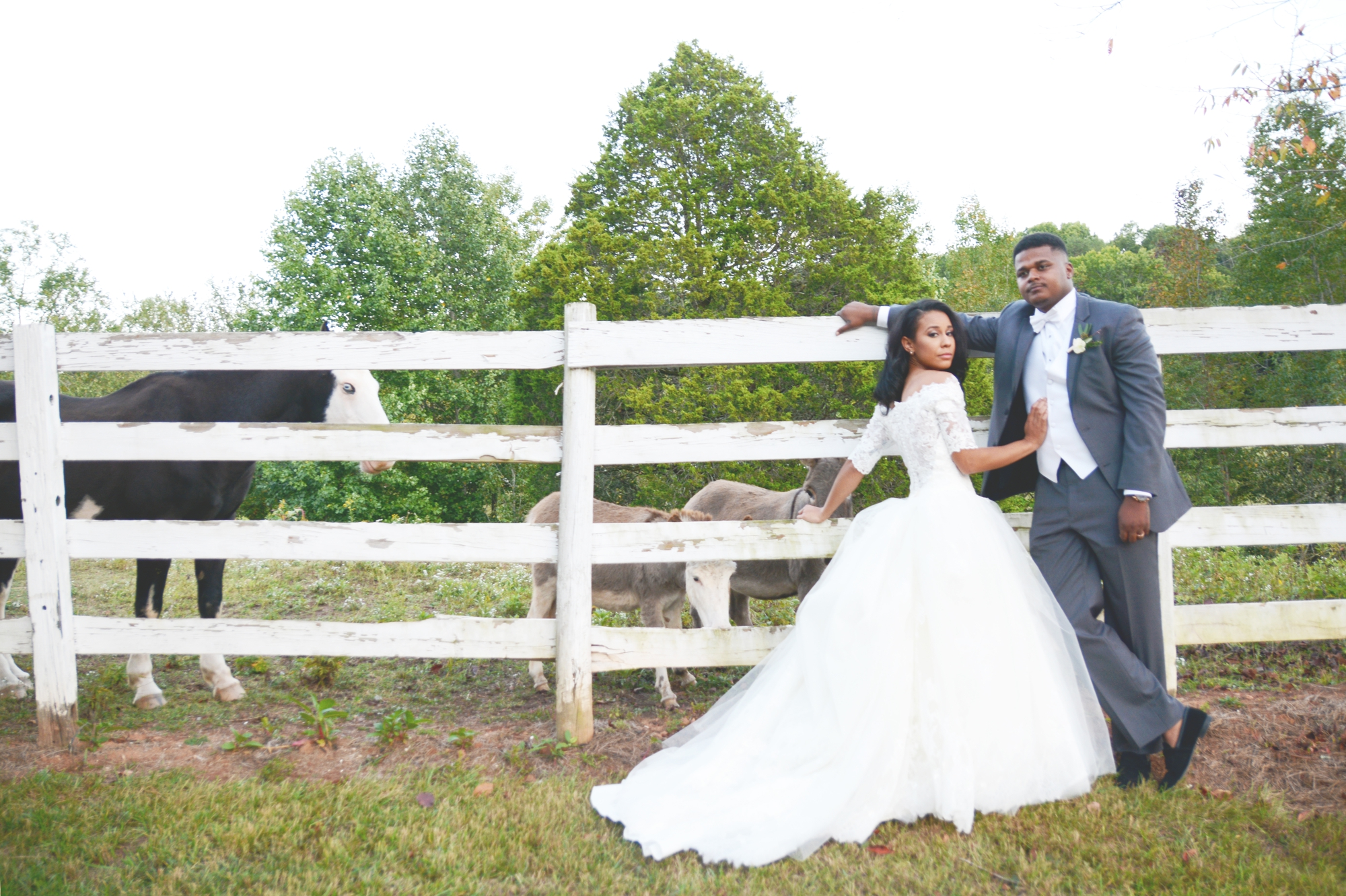 mountain-laurel-farm-wedding-six-hearts-photography027-1