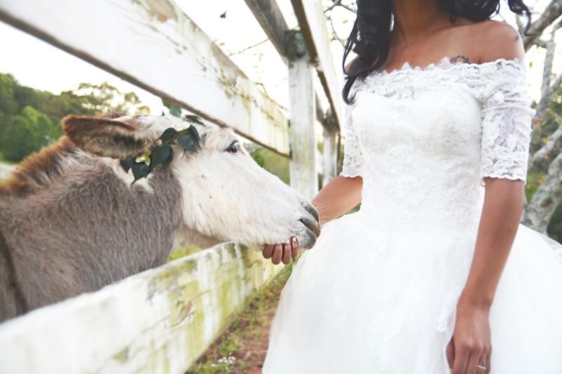 creative-wedding-photographer-best-of-2016-six-hearts-photography149