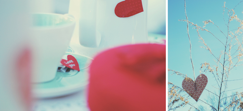Valentines Day Wedding - Six Hearts Photography022